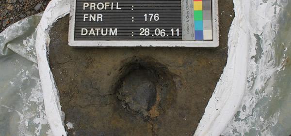 Hufabdruck aus einer Grabung am  Alten Lager
