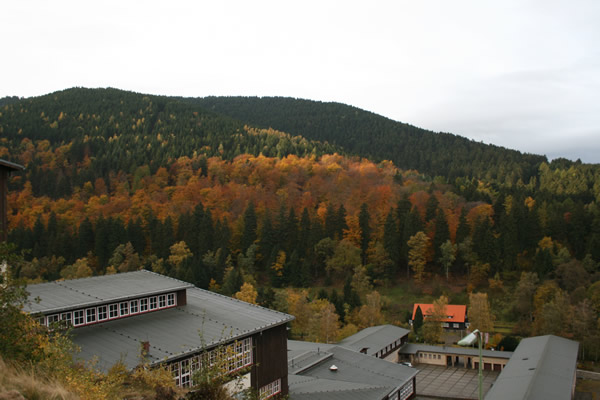 Ein Blick über das Gelände des Besucherbergwerks Rammelsberg und die herbstlichen Wälder der Umgebung