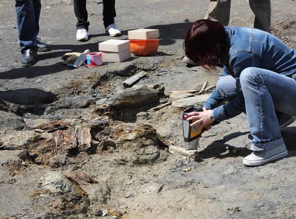 Archäologische Funde aus der Grabungskampagne im Alten Lager werden analysiert
