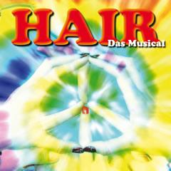HAIR - das Musical - Plakat Rammelsberg